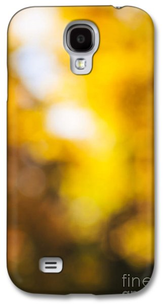 Abstract Nature Galaxy S4 Cases - Sunny fall forest Galaxy S4 Case by Elena Elisseeva