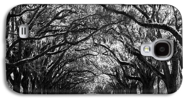 Oaks Galaxy S4 Cases - Sunny Southern Day - Black and White Galaxy S4 Case by Carol Groenen