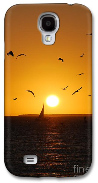 Reflections Of Sun In Water Galaxy S4 Cases - Sunset Birds Key West Galaxy S4 Case by Susanne Van Hulst
