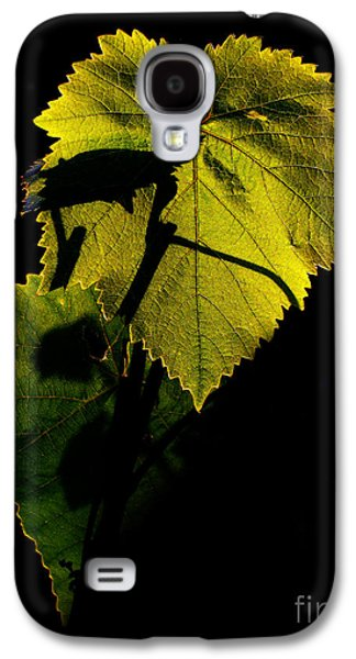 Vine Leaves Galaxy S4 Cases - Sunset in My Garden Galaxy S4 Case by Eena Bo