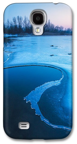 Blue Galaxy S4 Cases - Swan Galaxy S4 Case by Davorin Mance