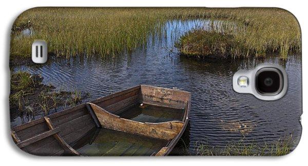 Fens Galaxy S4 Cases - Swedish swamp Galaxy S4 Case by Heiko Koehrer-Wagner