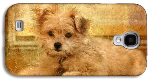 Dog Framed Prints Digital Art Galaxy S4 Cases - Taking A Break Galaxy S4 Case by Angie Tirado