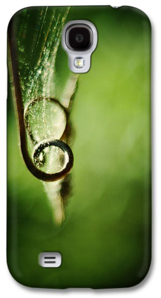 Tendrils Galaxy S4 Cases - Tendril and Web Galaxy S4 Case by Rebecca Sherman