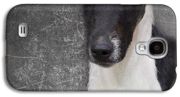 Terrier Galaxy S4 Cases - Terrier Galaxy S4 Case by Rebecca Cozart