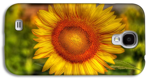 Stamen Digital Galaxy S4 Cases - Thai Sunflower Galaxy S4 Case by Adrian Evans