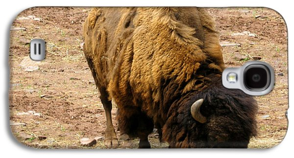 Bison Digital Galaxy S4 Cases - The American Buffalo Galaxy S4 Case by Bill Cannon