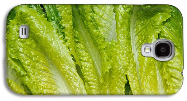 Romaine Galaxy S4 Cases - The Heart Of Romaine Galaxy S4 Case by Andee Design