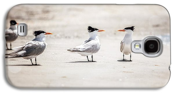Tern Galaxy S4 Cases - The Talking Terns Galaxy S4 Case by Lisa Russo