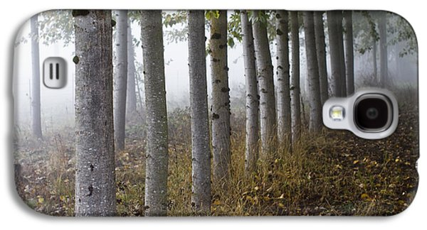 Fog Photographs Galaxy S4 Cases - The Woods Galaxy S4 Case by Rebecca Cozart