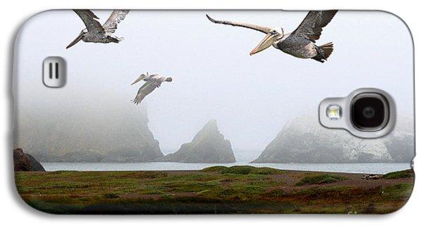 Wingsdomain Galaxy S4 Cases - Three Pelicans Galaxy S4 Case by Wingsdomain Art and Photography