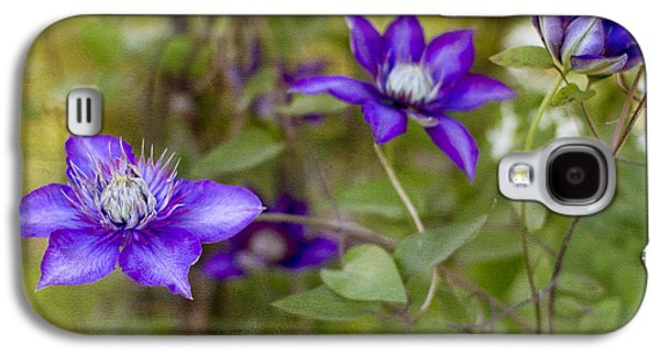 Vines Galaxy S4 Cases - Three Sisters Galaxy S4 Case by Rebecca Cozart