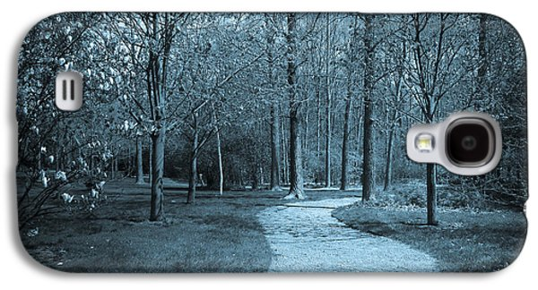 Selenium Galaxy S4 Cases - Through The Park Galaxy S4 Case by Robin Konarz