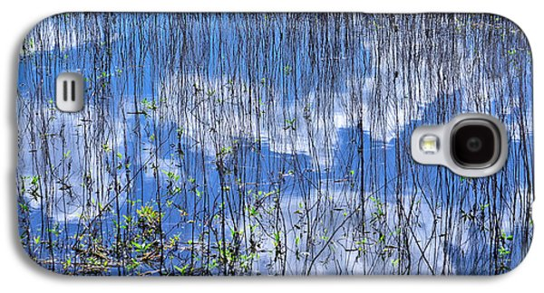 Nature Abstracts Galaxy S4 Cases - Through The Reeds Galaxy S4 Case by Carolyn Marshall