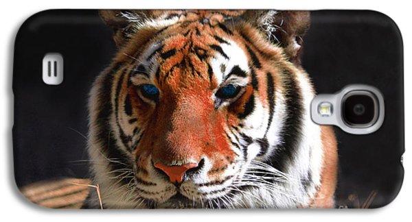 The Tiger Galaxy S4 Cases - Tiger Blue Eyes Galaxy S4 Case by Rebecca Margraf