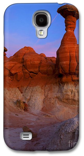 Toadstools Galaxy S4 Cases - Toadstool Dusk Galaxy S4 Case by Mike  Dawson
