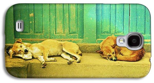 Sleeping Dog Galaxy S4 Cases - Tranquility Galaxy S4 Case by Danny Van den Groenendael