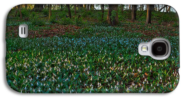 Forest Floor Galaxy S4 Cases - Trout Lilies on Forest Floor Galaxy S4 Case by Steve Gadomski