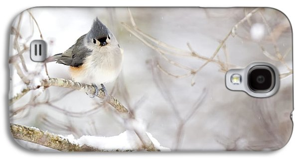 Tufted Titmouse In Snow Galaxy S4 Case by Rob Travis