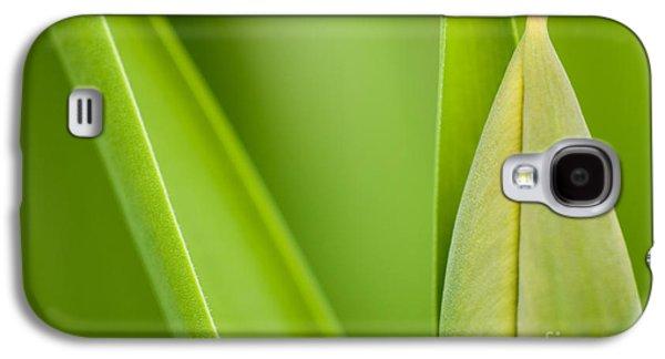 Green Galaxy S4 Cases - Tulip Galaxy S4 Case by Silke Magino