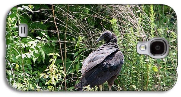 Turkey Vulture - Buzzard Galaxy S4 Case by EricaMaxine  Price