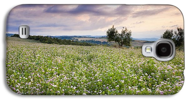 Tuscan Sunset Galaxy S4 Cases - Tuscany Flowers Galaxy S4 Case by Brian Jannsen