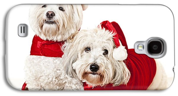 Coton Galaxy S4 Cases - Two cute dogs in santa outfits Galaxy S4 Case by Elena Elisseeva