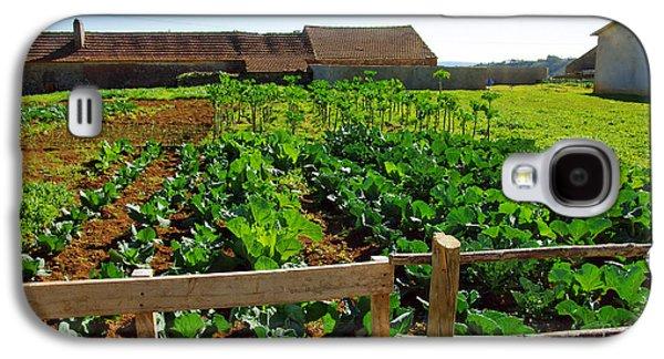 Agricultural Galaxy S4 Cases - Vegetable farm Galaxy S4 Case by Carlos Caetano