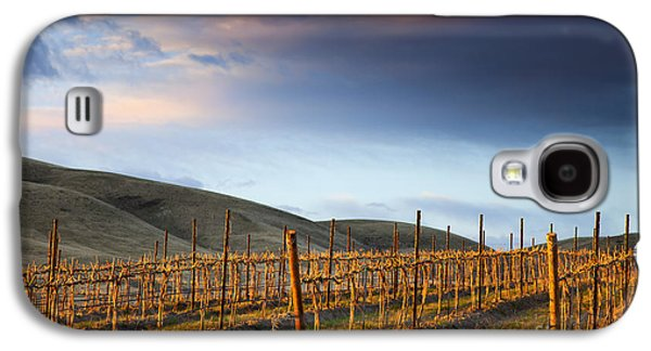 Yakima Valley Galaxy S4 Cases - Vineyard Storm Galaxy S4 Case by Mike  Dawson