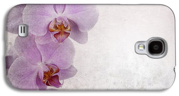 Manuscript Galaxy S4 Cases - Vintage orchids Galaxy S4 Case by Jane Rix