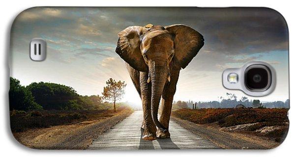Tusk Galaxy S4 Cases - Walking Elephant Galaxy S4 Case by Carlos Caetano