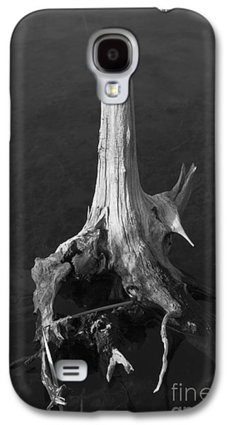 Tree Roots Galaxy S4 Cases - Weathered Stump Galaxy S4 Case by David Gordon