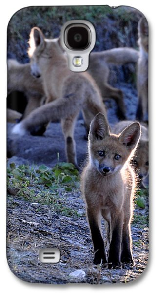 Fox Kit Paintings Galaxy S4 Cases - Welcome Galaxy S4 Case by AnnaJo Vahle