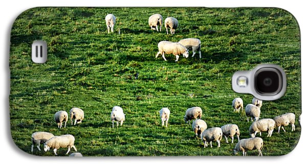 Sheep Digital Art Galaxy S4 Cases - What the Flock Galaxy S4 Case by Bill Cannon