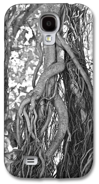 What Trees Know Galaxy S4 Case by Betsy Knapp