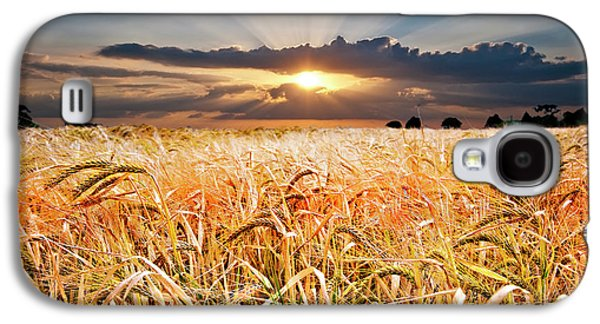 Sunsets Galaxy S4 Cases - Wheat At Sunset Galaxy S4 Case by Meirion Matthias