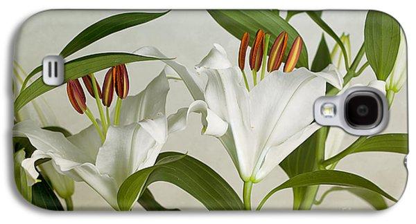 Studio Photographs Galaxy S4 Cases - White Lilies Galaxy S4 Case by Nailia Schwarz