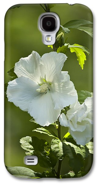 Althea Galaxy S4 Cases - White Rose of Sharon Galaxy S4 Case by Teresa Mucha