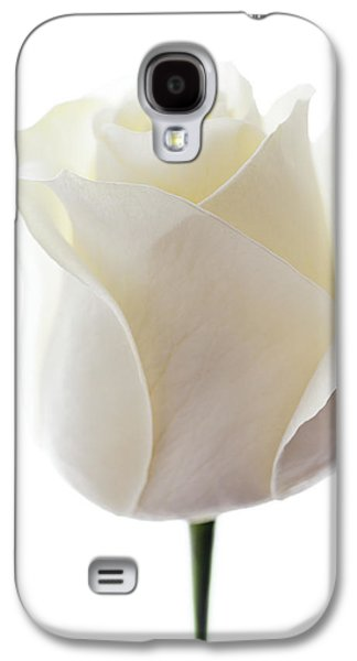 First Love Galaxy S4 Cases - White Rose (rosa Sp.) Galaxy S4 Case by Gavin Kingcome