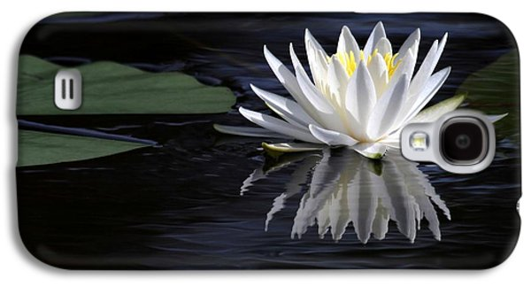 Garden Photographs Galaxy S4 Cases - White Water Lily Galaxy S4 Case by Sabrina L Ryan