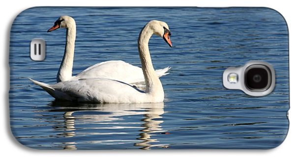Swan Pair Galaxy S4 Cases - Wild Swans Galaxy S4 Case by Sabrina L Ryan