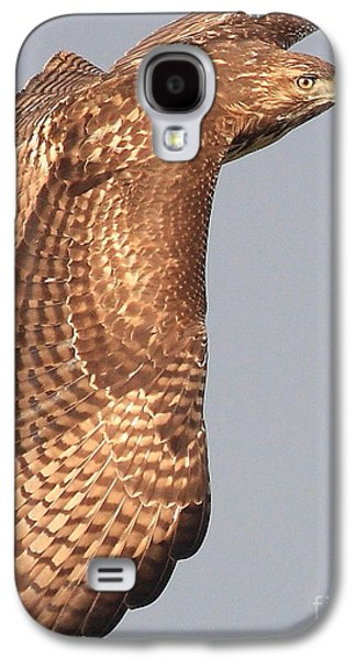 Red Tail Hawk Galaxy S4 Cases - Wings of a Red Tailed Hawk Galaxy S4 Case by Wingsdomain Art and Photography