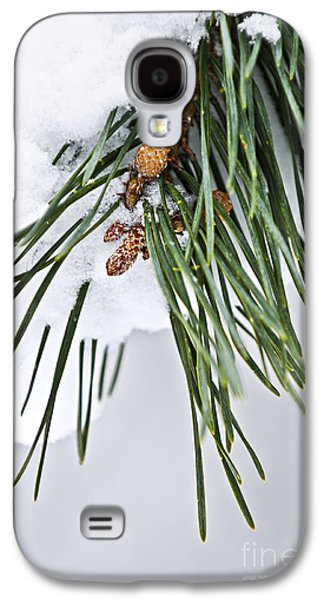 January Galaxy S4 Cases - Winter branches Galaxy S4 Case by Elena Elisseeva
