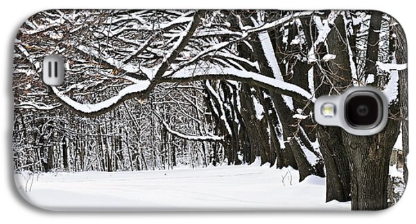 January Galaxy S4 Cases - Winter park with snow covered trees Galaxy S4 Case by Elena Elisseeva