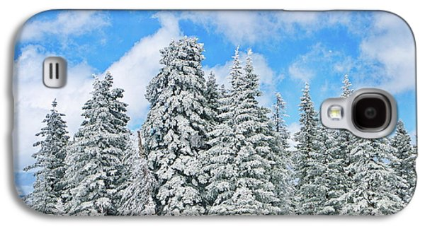 Snow Galaxy S4 Cases - Winterscape Galaxy S4 Case by Jeff Kolker