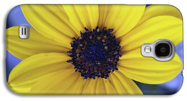 Nature Abstracts Galaxy S4 Cases - Yellow Flower 3 Galaxy S4 Case by Skip Nall