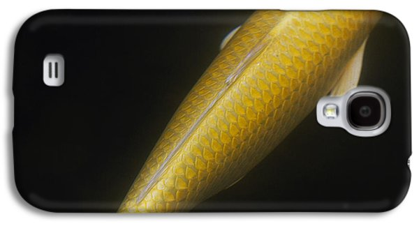 Fish Pond Galaxy S4 Cases - Yellow Koi Galaxy S4 Case by Rebecca Cozart