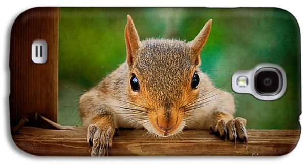 Squirrel Digital Art Galaxy S4 Cases - You Rang Galaxy S4 Case by Lois Bryan