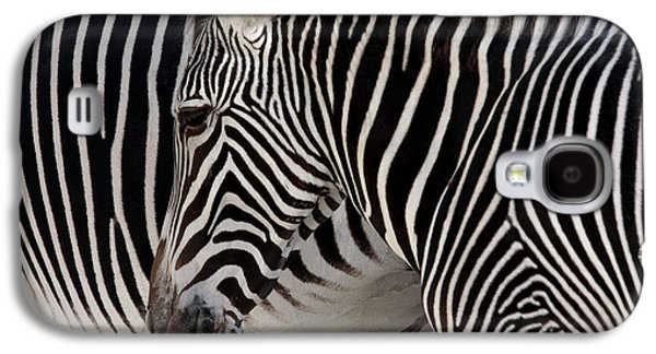 Nature Abstracts Galaxy S4 Cases - Zebra Head Galaxy S4 Case by Carlos Caetano