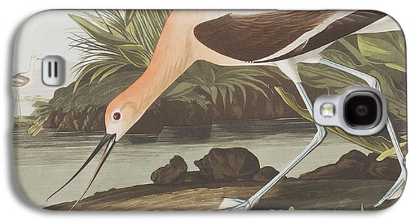 Americans Drawings Galaxy S4 Cases -  American Avocet  Galaxy S4 Case by John James Audubon